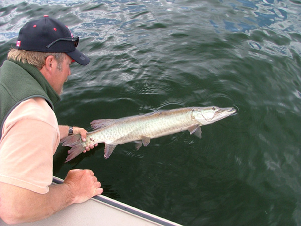 Eagle Lake Ontario Muskie Fishing